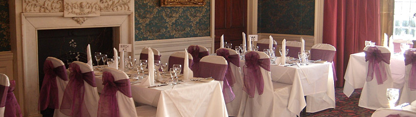 Gisborough Hall Longhull Room - two tone purple bows