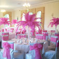 Grinkle park - hot pink feather displays and bows
