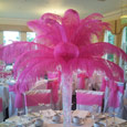 Feather displays (other colours available)